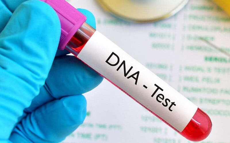 Thủ tục xét nghiệm ADN cha con gồm những gì?
