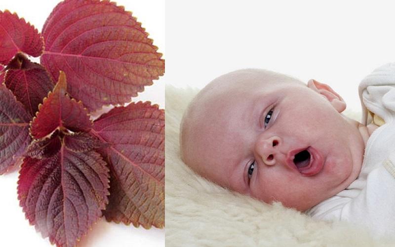 Cách trị sổ mũi cho bé -2