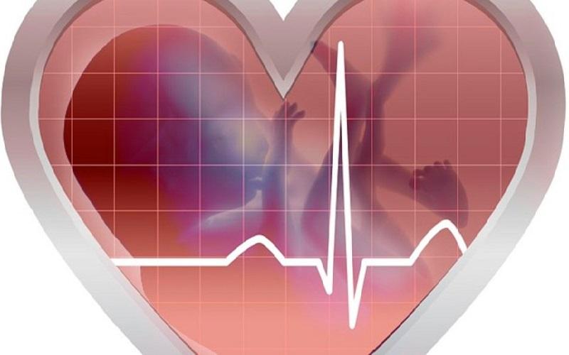 Vì sao mẹ nên thực hiện siêu âm tim thai nhi?